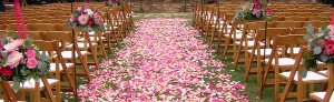 Line your wedding path with lots of colorful rose petals